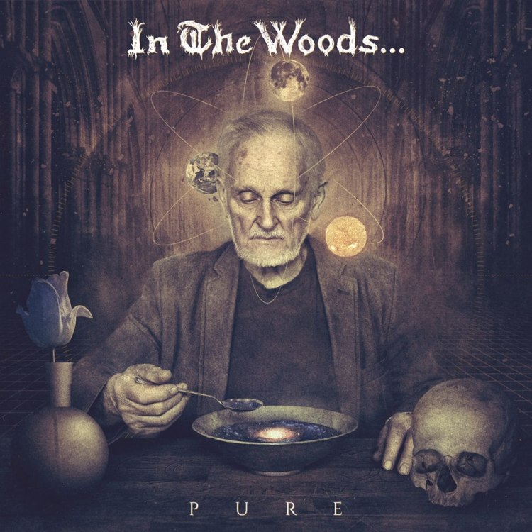 in-the-woods-cover